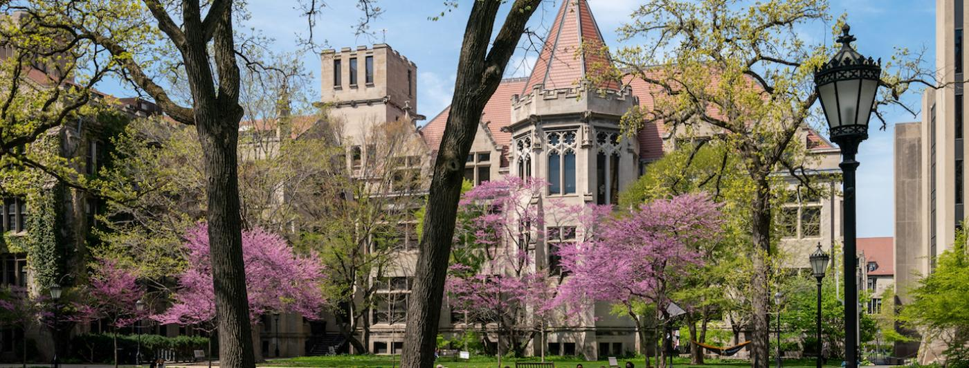 top 10 universities in the world chicago